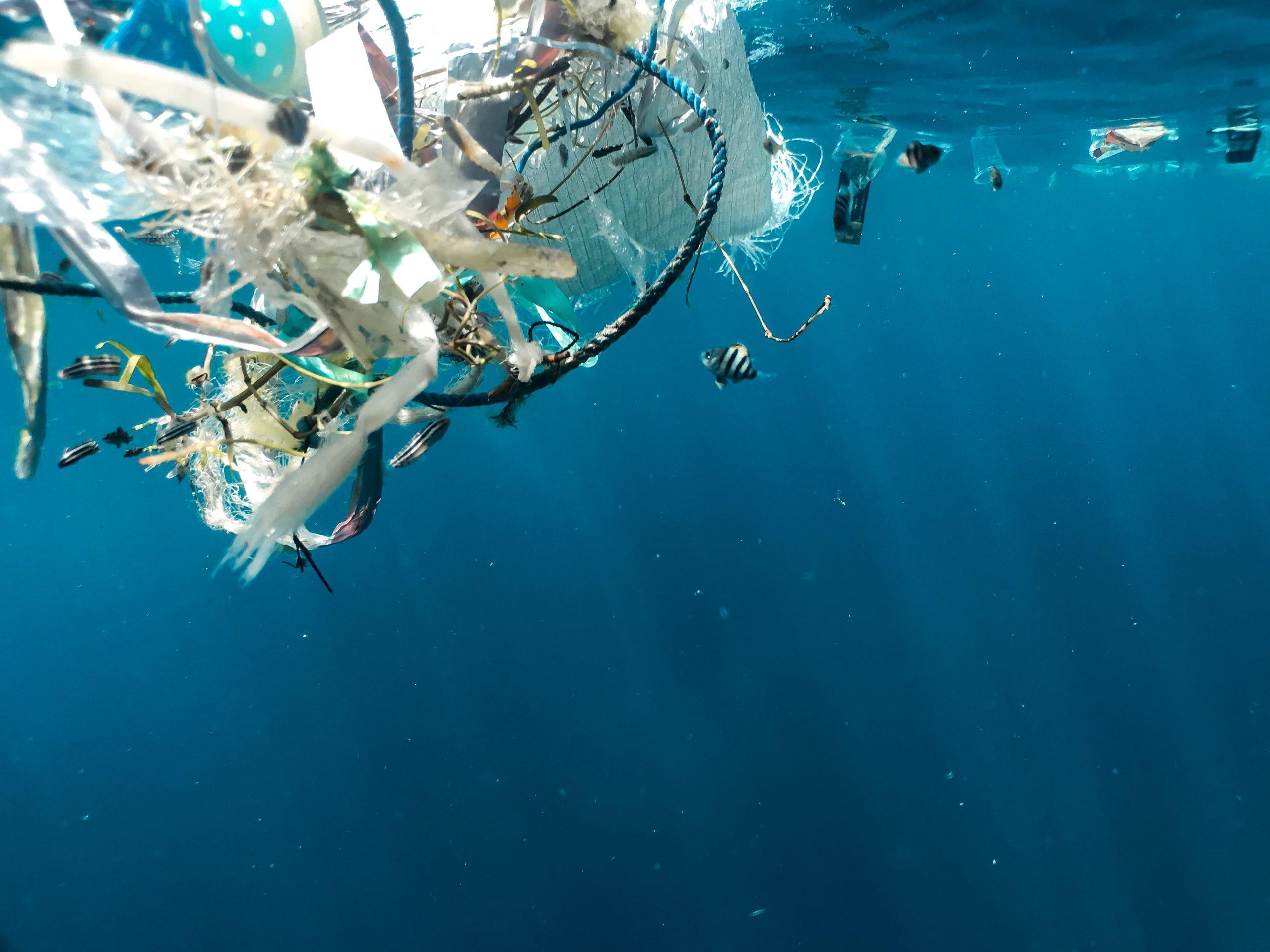 Ce que vous ne saviez pas sur le continent de plastiques